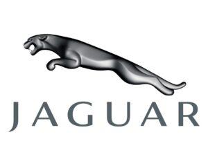 Assurance-Jaguar
